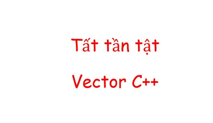 cach dung vector trong c